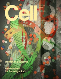 Cell (July 31st 2014)